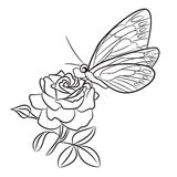 Butterfly on blooming rose, small bud and leaf. Black easy drawing line tattoo Royalty Free Stock Image