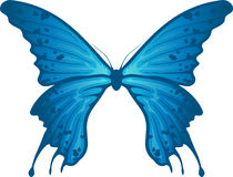 Butterfly Blue Stock Photo