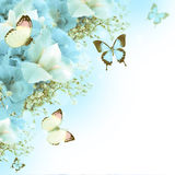 Butterfly, blue hydrangeas and white irises Royalty Free Stock Image