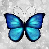 Butterfly In Blue Tones. Vector Stock Image