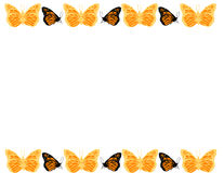 Butterfly Border. Hand drawn Butterfly Pattern Border/Background vector illustration