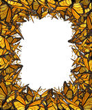 Butterfly Border Blank Frame Stock Image