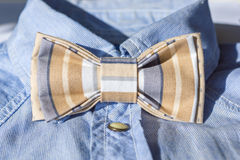 Butterfly bow tie on shirt Stock Photo