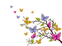 Butterfly branch Royalty Free Stock Images