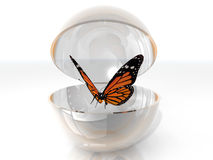 Butterfly in a bubble. The beautiful butterfly in a open bubble Stock Image