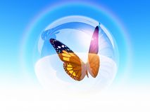 Butterfly in bubble Stock Images