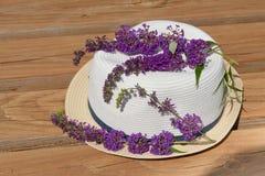 Butterfly bush blossom on summer hat at garden. Stock Photos