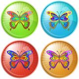 Butterfly, button Royalty Free Stock Image