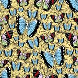 Butterfly cartoon drawing seamless pattern, vector background. Abstraction drawn insect with colorful pastel wing on yellow textur Royalty Free Illustration