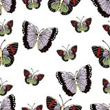 Butterfly cartoon drawing seamless pattern, vector background. Abstraction drawn insect with colorful pastel wings on white backgr Stock Illustration
