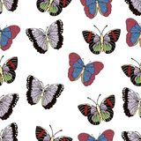 Butterfly cartoon drawing seamless pattern, vector background. Abstraction drawn insect with colorful pastel wings on white backgr Royalty Free Illustration