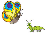 Butterfly and a caterpillar. On a white background vector illustration
