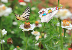 Butterfly and children in air. Children in plane photographing a beautiful butterfly Royalty Free Stock Images