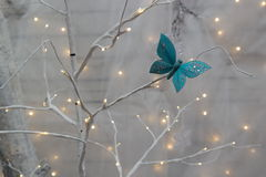Butterfly and christmas decorations. Light blue jewelled butterfly on white tree branch with Christmas lights isolated against white background Royalty Free Stock Photo