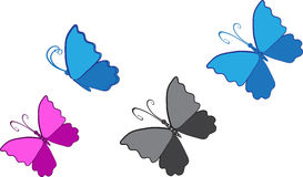 Butterfly clip art Stock Photo