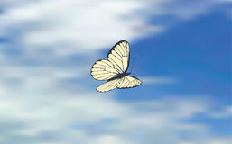 Butterfly in clouds Royalty Free Stock Image