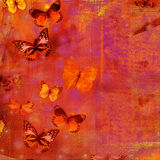 Butterfly collage. In pink, red and orange Royalty Free Stock Photos