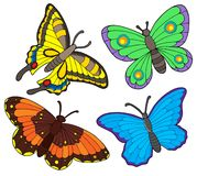 Butterfly collection Royalty Free Stock Photo