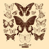 The Butterfly Collection Royalty Free Stock Photos