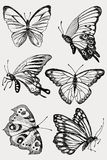 Collection of Hand Drawn black silhouette butterflies. Vector illustration in vintage style. stock images
