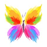 Butterfly from color splashes and line brushes. Vector stock photo