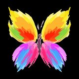 Butterfly from color splashes and line brushes. Vector royalty free stock images