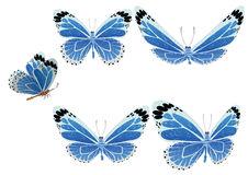 The butterfly with color wings. Vector. Royalty Free Stock Image