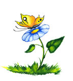 Butterfly on colorful flower Stock Images