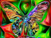 Butterfly Colors Stock Photo