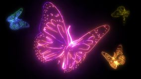 Butterfly created by light and neon in the darkness