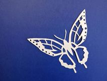 Butterfly cut from white paper on blue background Stock Images