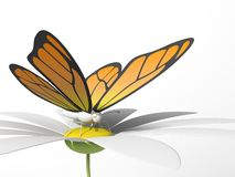 Butterfly on a daisy. Orange butterfly on a daisy. 3d render. White isolated background Stock Images