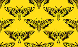 Butterfly Deaths head hawk moth seamless pattern. Butterfly Deaths head hawk moth. The symbol of the triple goddess. Vintage seamless pattern. For prints, T Stock Images