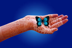 Butterfly in a decorated girl's hand. A butterfly in a girl's hand which is decorated with mehandi Royalty Free Stock Images