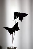 Butterfly Decoration Silhouette Stock Photos