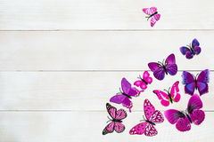Butterfly decoration. On the white wooden background royalty free stock images