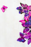 Butterfly decoration. On the white wooden background royalty free stock image