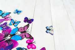 Butterfly decoration. On the white wooden background royalty free stock photography
