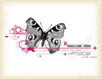 Butterfly design element. Grungy design element with halftone butterfly and circles Royalty Free Stock Images