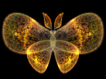 Butterfly Design. Unreal Butterfly series. Abstract butterfly element on the subject of imagination, nature and design Stock Photos
