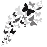 Butterfly design on white background Stock Image
