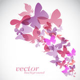 Butterfly design on white background Royalty Free Stock Photography