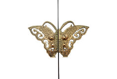 Butterfly door Royalty Free Stock Images