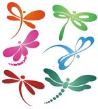 Butterfly(dragonfly ) logo design Stock Images