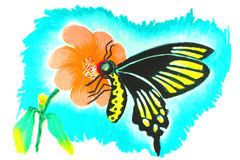 Butterfly drawing. Background Stock Photos