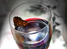 Butterfly drinking wine Royalty Free Stock Photos