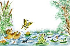 Butterfly, duckling and frog. Watercolors/pastel illustration. Butterfly, duckling and frog are playing together on the pond. Useful for childrens cards Royalty Free Stock Photography