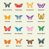 Butterfly elements Royalty Free Stock Photo