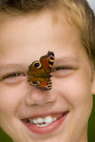 Butterfly on face. Butterfly on the boy face Stock Photography