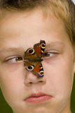 Butterfly on face Stock Photography